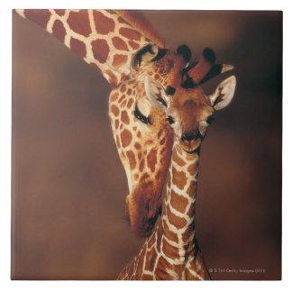 Adult Giraffe with calf (Giraffa camelopardalis) Ceramic Tile