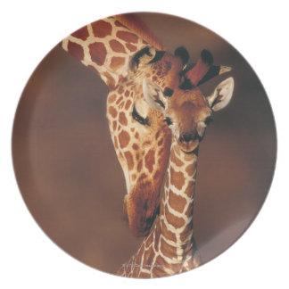 Adult Giraffe with calf (Giraffa camelopardalis) Dinner Plate