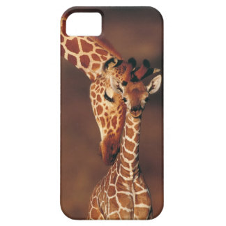 Adult Giraffe with calf (Giraffa camelopardalis) iPhone SE/5/5s Case