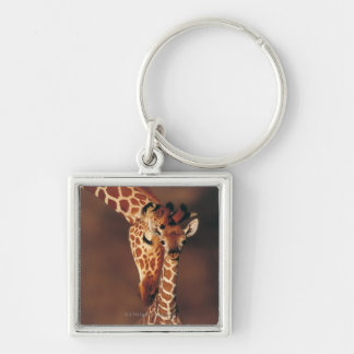 Adult Giraffe with calf (Giraffa camelopardalis) Keychain