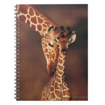 Adult Giraffe with calf (Giraffa camelopardalis) Notebook