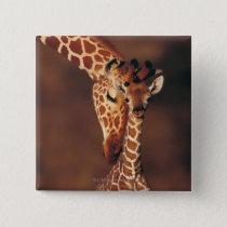 Adult Giraffe with calf (Giraffa camelopardalis) Pinback Button