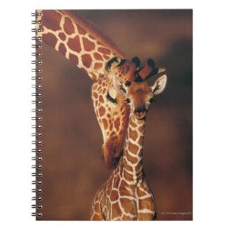 Adult Giraffe with calf (Giraffa camelopardalis) Spiral Notebook