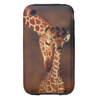 Adult Giraffe with calf (Giraffa camelopardalis) Tough iPhone 3 Cover
