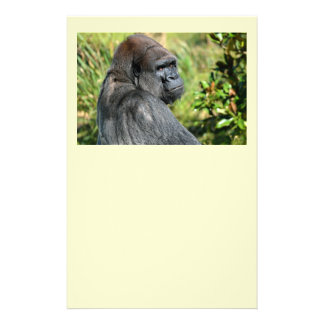 Adult Gorilla Personalized Flyer