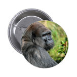 Adult Gorilla Pinback Button