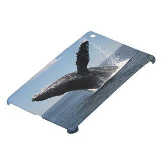 Adult Humpback Whale Breaching iPad Mini Covers