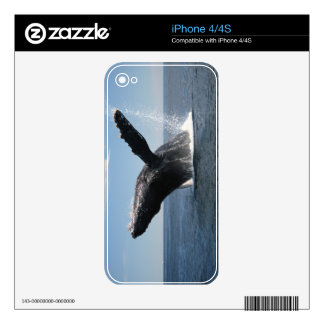 Adult Humpback Whale Breaching iPhone 4 Skins