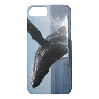 Adult Humpback Whale Breaching iPhone 7 Case