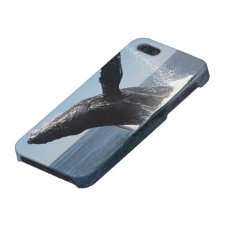 Adult Humpback Whale Breaching Cover For iPhone 5