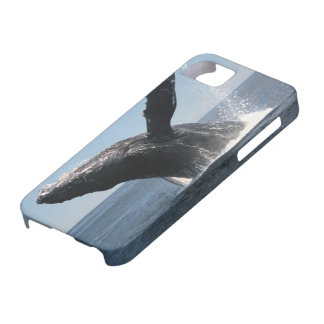Adult Humpback Whale Breaching iPhone SE/5/5s Case