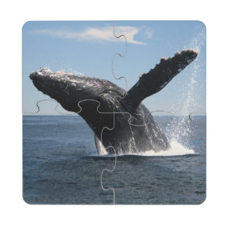 Adult Humpback Whale Breaching Puzzle Coaster
