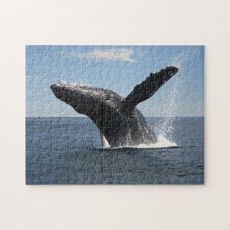 Adult Humpback Whale Breaching Jigsaw Puzzles
