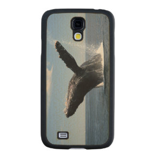 Adult Humpback Whale Breaching Carved® Maple Galaxy S4 Slim Case