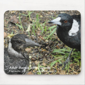 Adult Magpie with Juvenile Mousepads