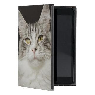 Adult Maine Coon Cat Case For iPad Mini