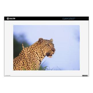 """Adult male leopard (Panthera pardus) 15"""" Laptop Skin"""