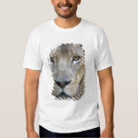 Adult male lion at the Sacramento Zoo, CA T-Shirt