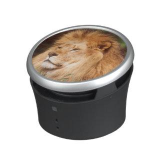 Adult male Lion Bluetooth Speaker