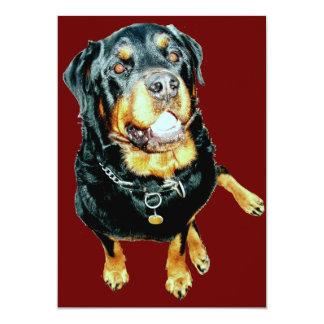 Adult Male Rottweiler Card