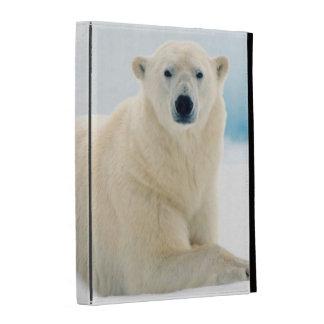 Adult polar bear large boar on the summer ice iPad case