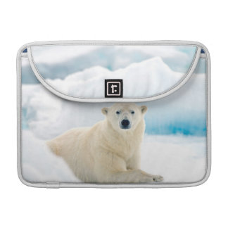 Adult polar bear large boar on the summer ice MacBook pro sleeves