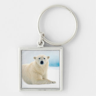 Adult polar bear large boar on the summer ice Silver-Colored square keychain