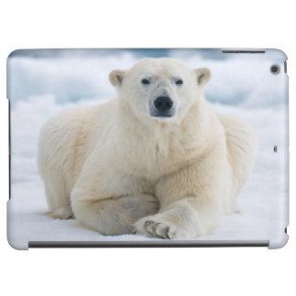 Adult polar bear on the summer pack ice iPad air cover