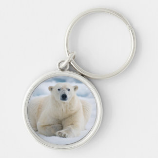 Adult polar bear on the summer pack ice keychain