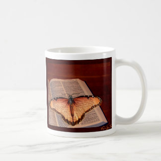 Adult Stage of the Bookworm Mugs