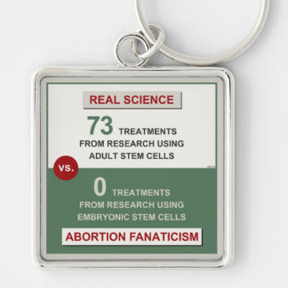 Adult Stem Cell Research Keychain