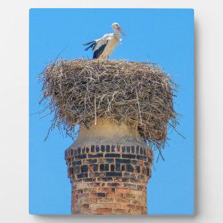 Adult stork in nest on chimney.JPG Plaque