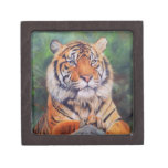 Adult Tiger - small trinket box Premium Jewelry Boxes