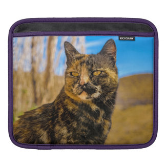 Adult Wild Cat Sitting and Watching iPad Sleeve