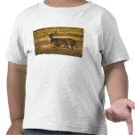 adulto Blanco-atado de los ciervos (virginianus Camiseta