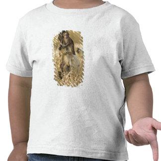 Adulto del Langur de Hanuman con los jóvenes Camiseta