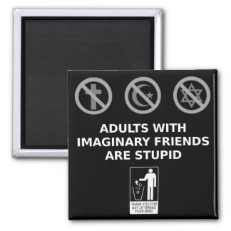 Adults With Imaginary Friends Are Stupid 2 Inch Square Magnet