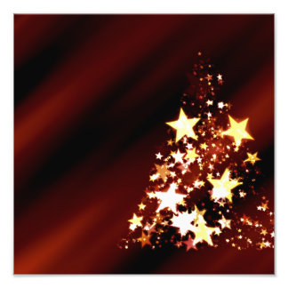 Advent Star Christmas Christmas Tree Poinsettia Photo Print
