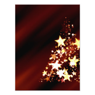 Advent Star Christmas Christmas Tree Poinsettia Photographic Print