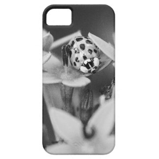 Adventurous Lady iPhone SE/5/5s Case