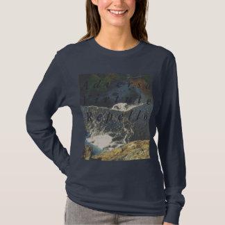 """Adversa Virtute Repello"" Long Sleeve T-Shirt"