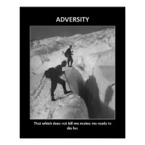adversity-that-which-does-not-kill-me-makes-me poster