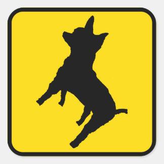 ¡Advertencia - chihuahua a continuación! Pegatina Cuadrada