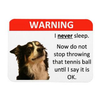 Advertencia de la pelota de tenis (border collie) imanes rectangulares