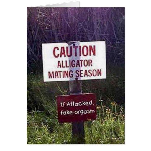 ¡Advertencia del cocodrilo! Felicitacion
