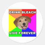Advice Dog Round Stickers