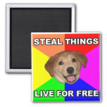Advice Dog Steal Things, Live for Free Refrigerator Magnets