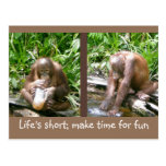 advice: Life's short, have fun Post Card