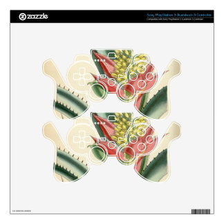 Aechmea mertensii (= mucroniflora) skins for PS3 controllers