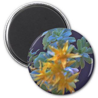 Aeonium floreciente imán redondo 5 cm